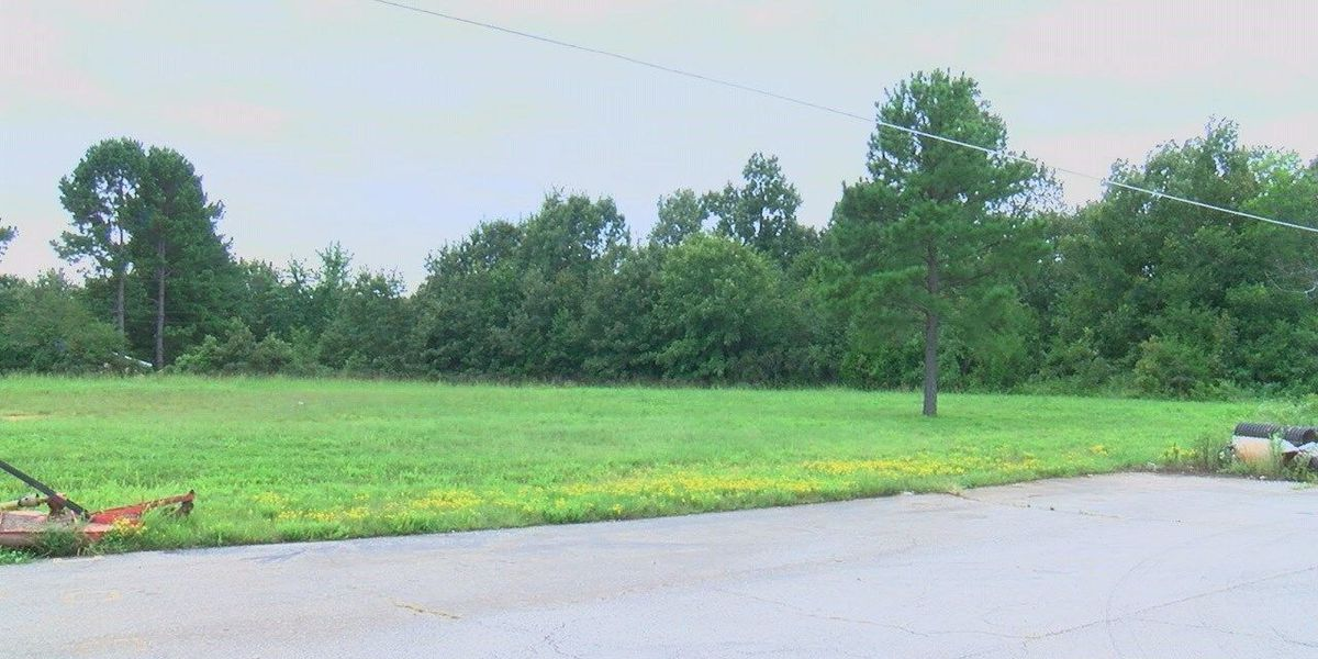City looks to add park behind fire station