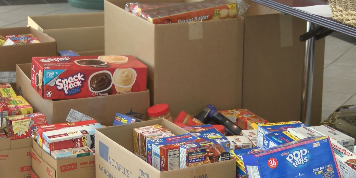 Women's Council holds emergency food drive