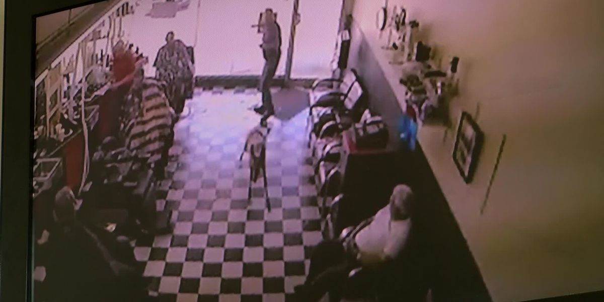 Caught on Camera: Deer crashes through Owensboro barber shop