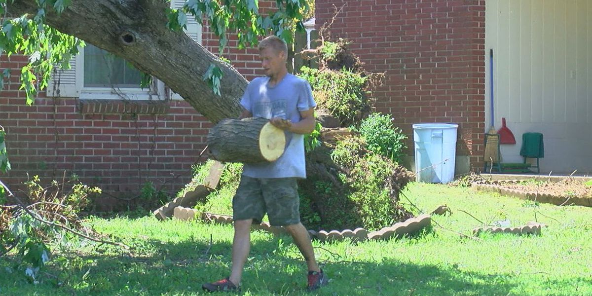 Walnut Ridge residents continue to clean up after storm