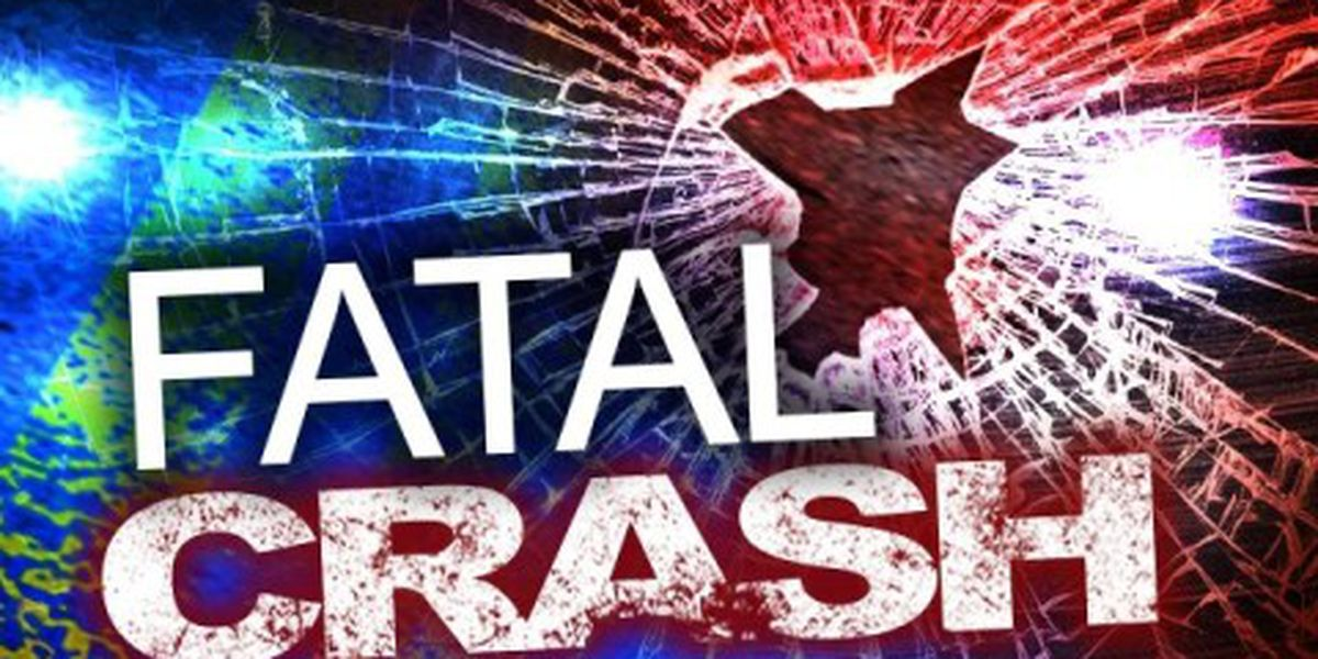 Portia man hit, killed by car in White County