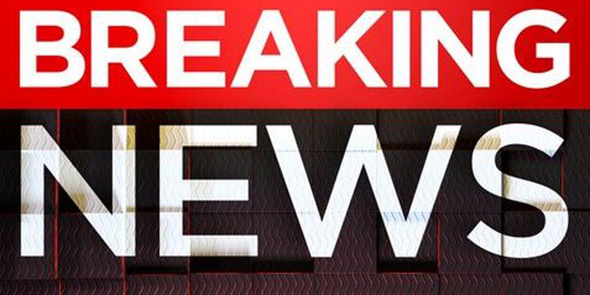 One dead, one injured in vehicle/pedestrian crash on Red Wolf