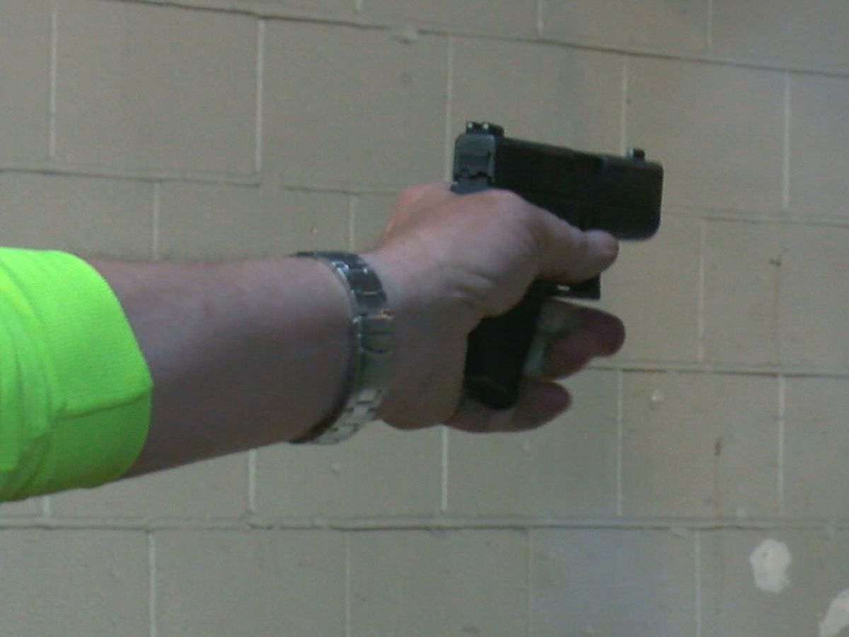 Several Region 8 elected officials take stand on Second Amendment