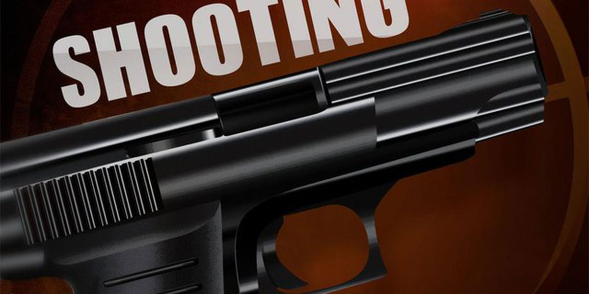 Park shooting sends man to hospital, another to jail