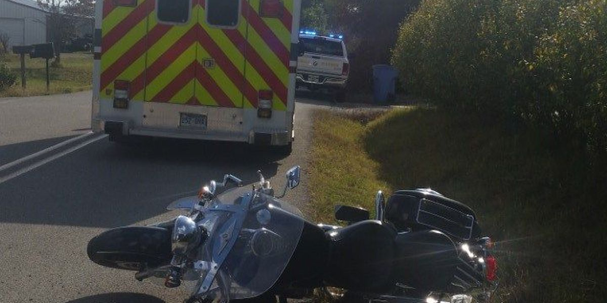 Dog causes serious motorcycle accident