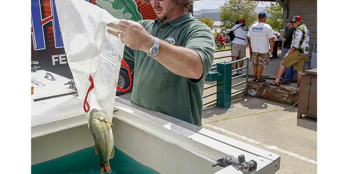 Anglers, biologists work hard to keep bass at Forrest Wood Cup healthy