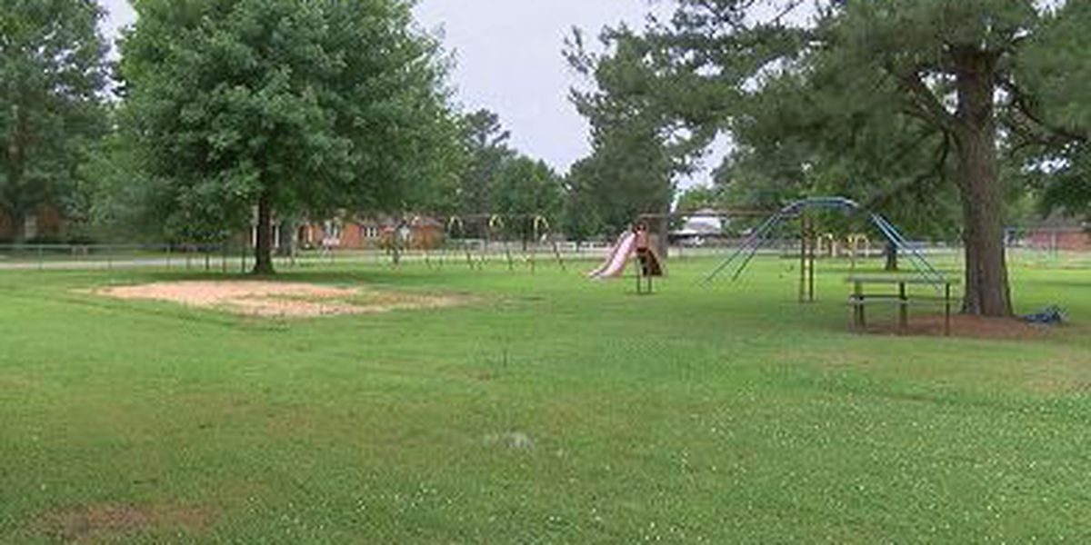 Group looks to renovate and move 'Tot Lot' playground