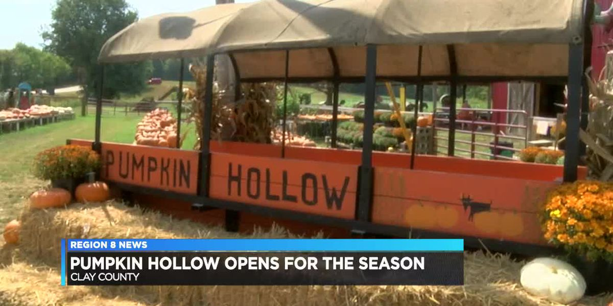 Pumpkin Hollow opens for the season