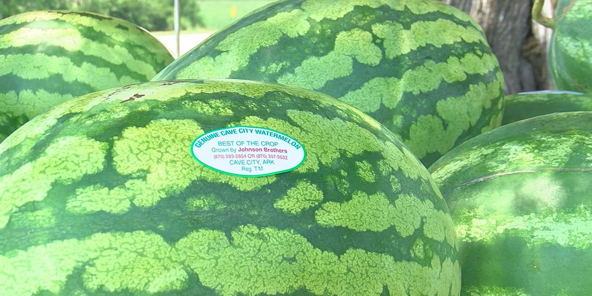 Cave City celebrates 40th Watermelon Festival