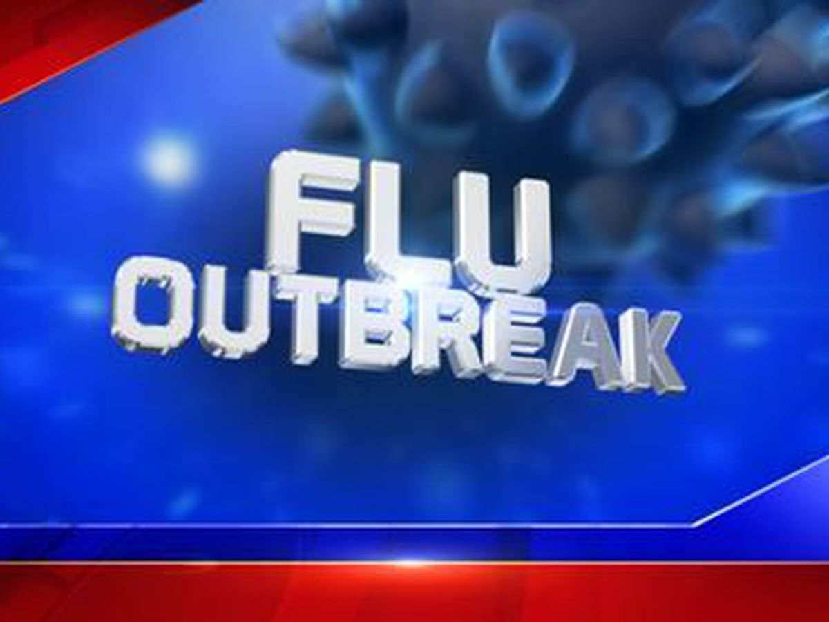 School canceled Friday due to flu