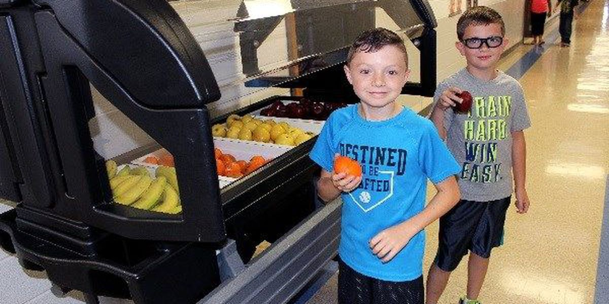 Funding to increase fresh fruits, vegetables to schools
