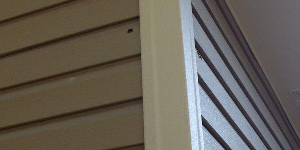 Bullet holes found in Jonesboro home