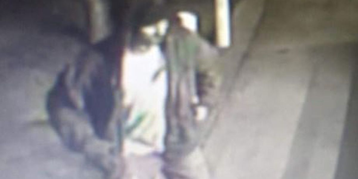 Portageville police looking to ID suspect, vehicle in attempted burglary