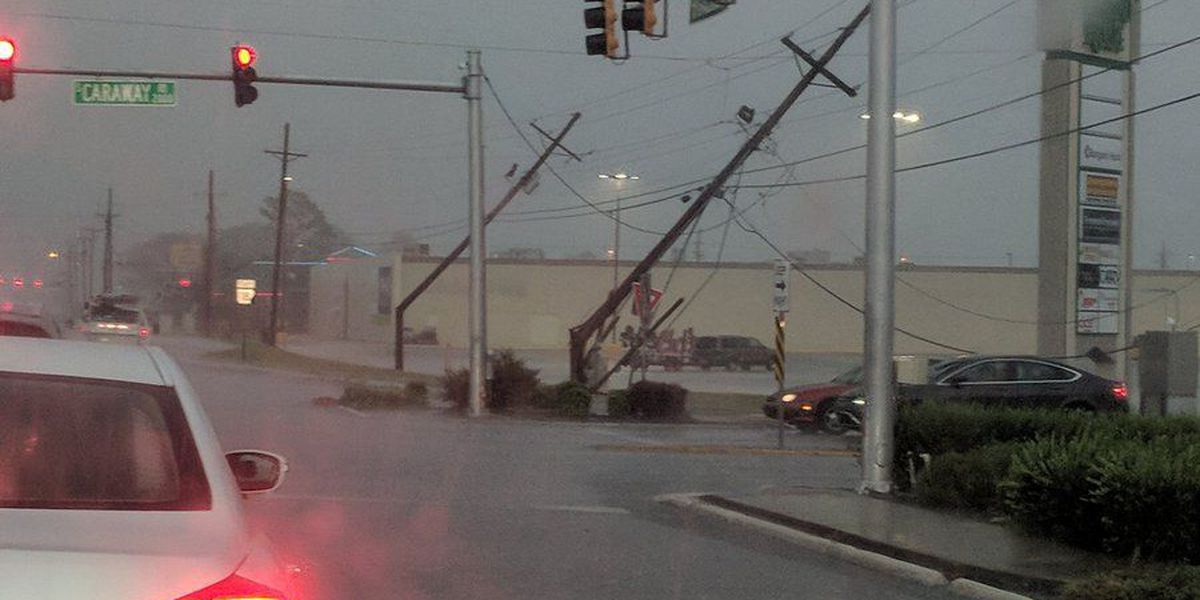 Storms roar through several counties, causing major tree, power line damage