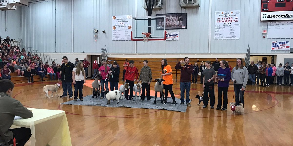 Make-A-Wish student receives wish granting at assembly