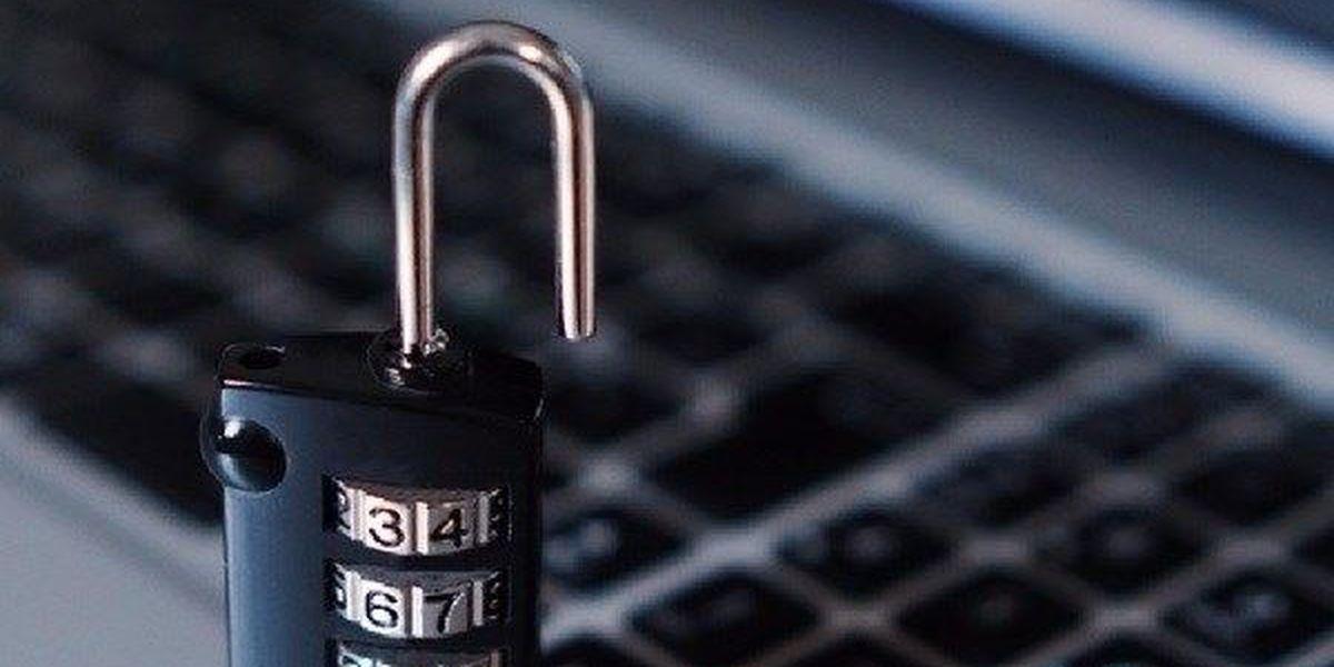 Phishing scam nets hundreds of Viskase employee IDs