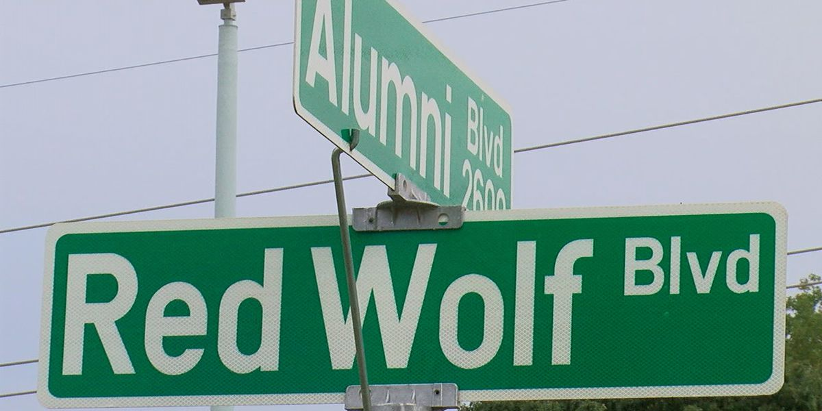 Woman hit by vehicle while crossing highway to get to A-State football game