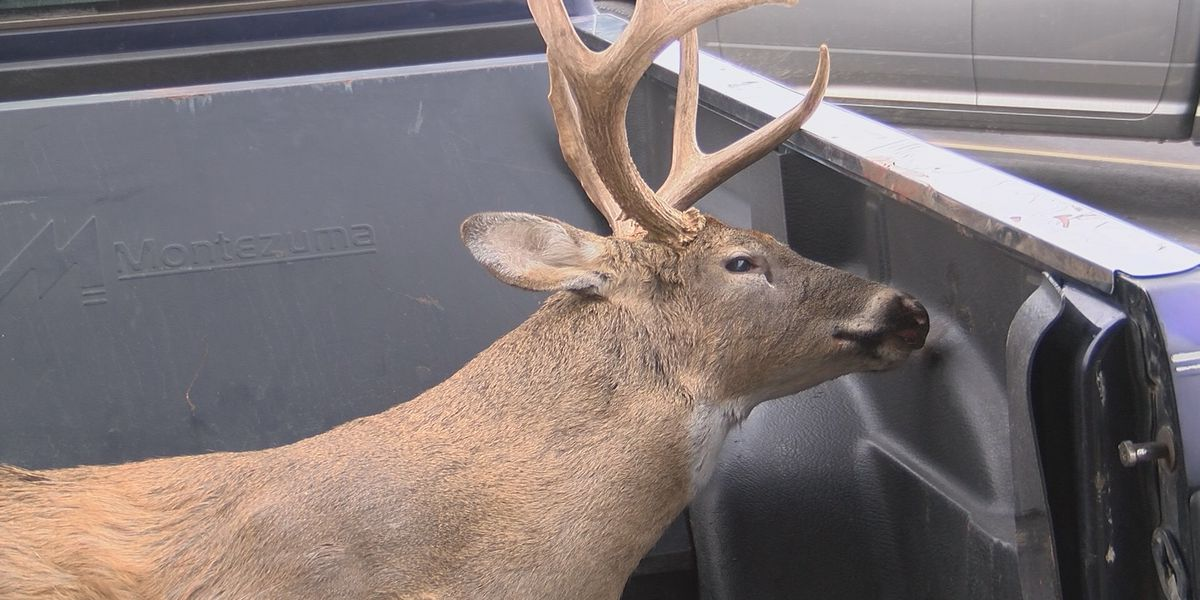 Deer processing businesses very busy in Missouri's opening weekend