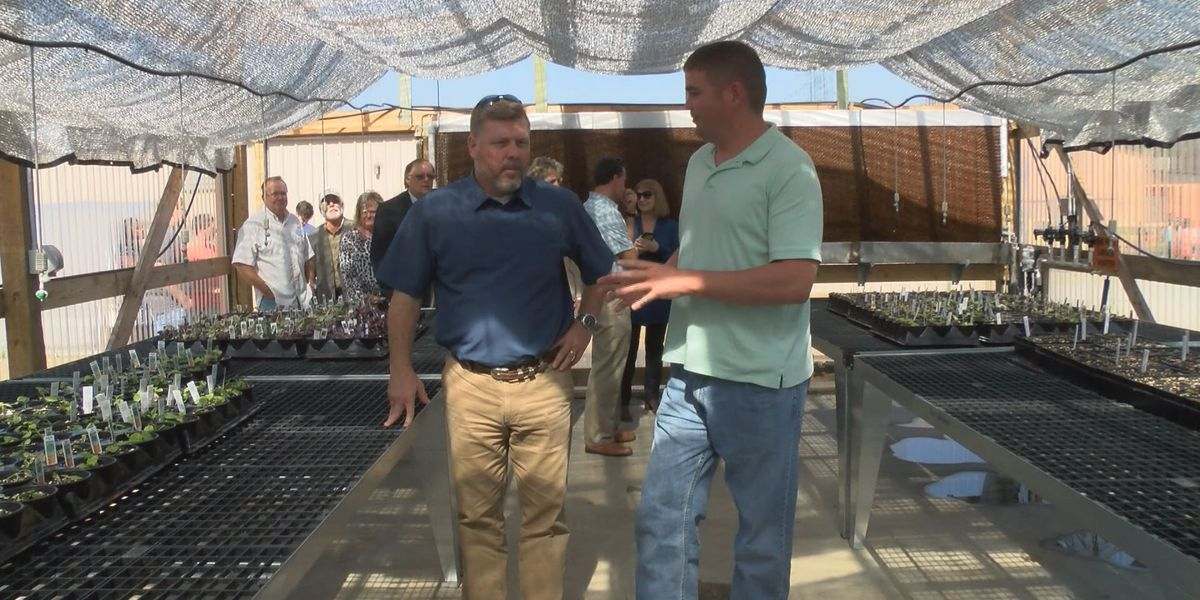 Lawrence County students show off crops to Congressman Rick Crawford