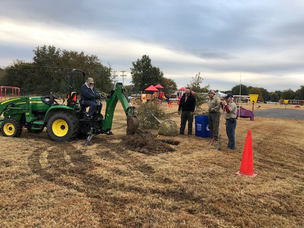 Grant allows trees to be planted at Wynne school playgrounds