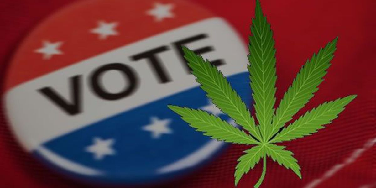 Groups campaign for medical marijuana as others work to vote both proposals down