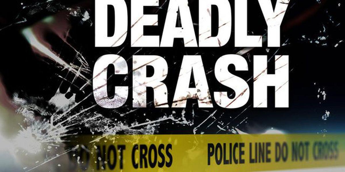 Man dies in early-morning crash