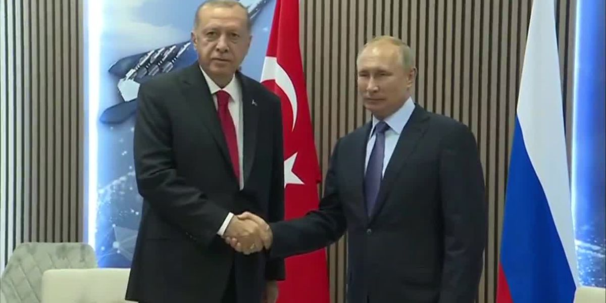 Erdogan, Putin to decide fate of Syria's border