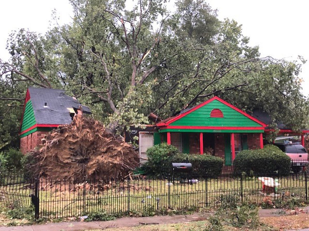 Severe weather brings storm damage to Mid-South