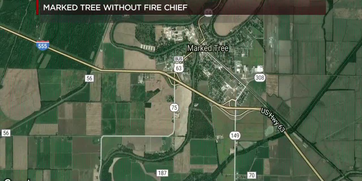 Marked Tree Fire Chief removed, mayor says
