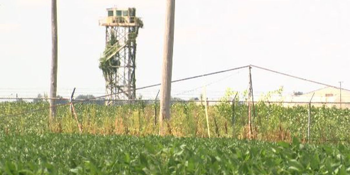 New jobs possibly coming to Mississippi County