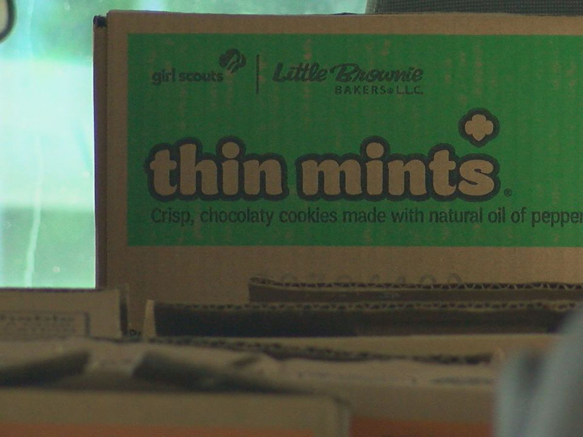 Girl Scouts thank healthcare workers with tasty treat