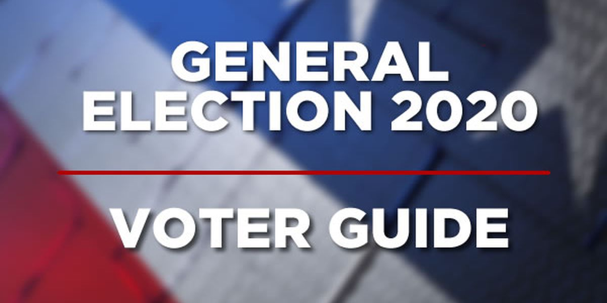 Election Day in Arkansas: What you need to know for the 2020 General Election