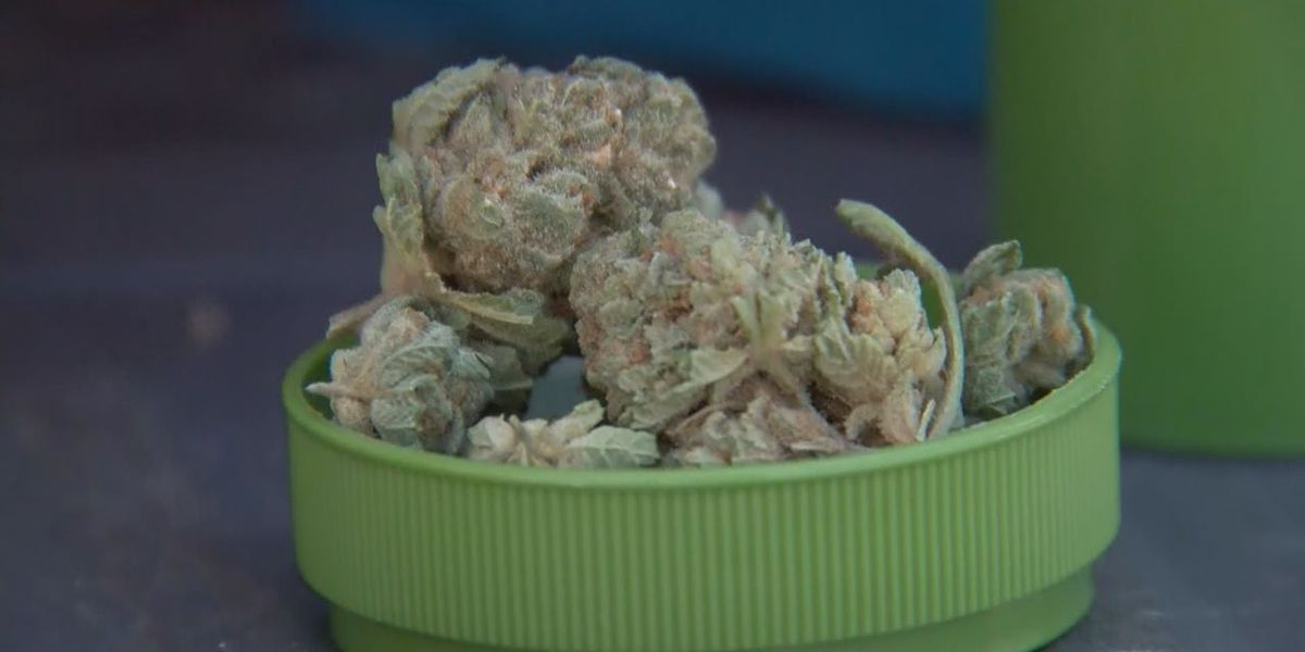 Over 50 pounds of medical marijuana sold in Arkansas