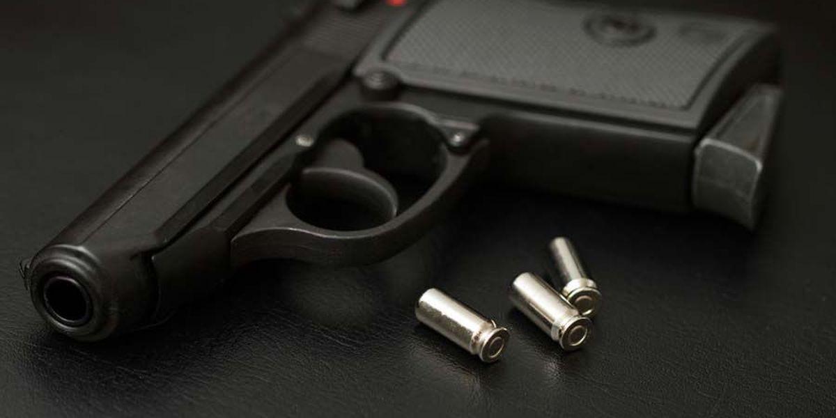 Arkansas panel backs resolution on no-permit gun carrying