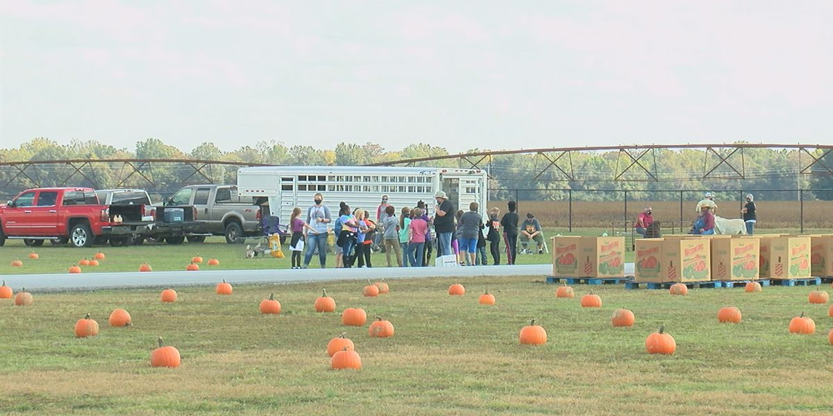 "Newport Elementary hosts ""field trip"" for students"