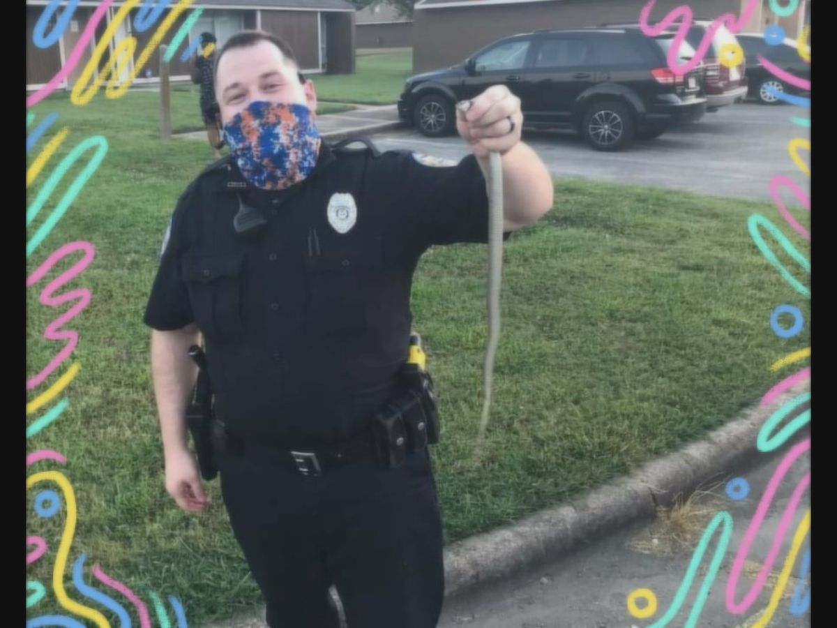 Osceola police help residents remove snake from home