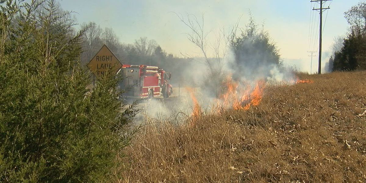 Forestry commission warns about wildfire danger