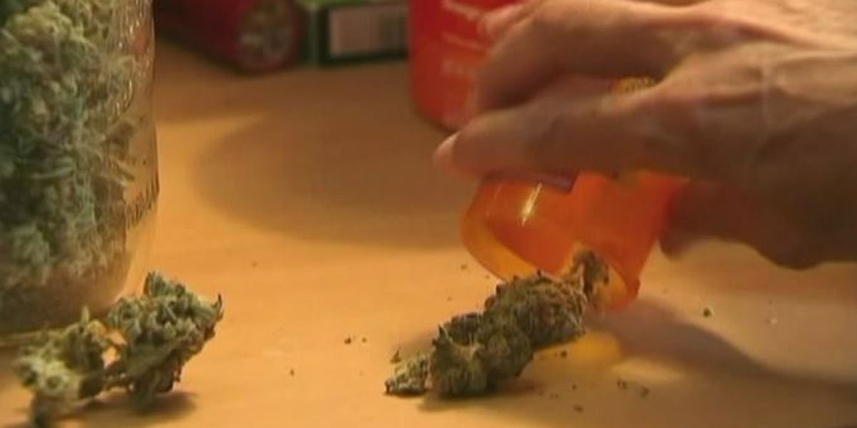 Pediatric nurse appointed to Arkansas marijuana board