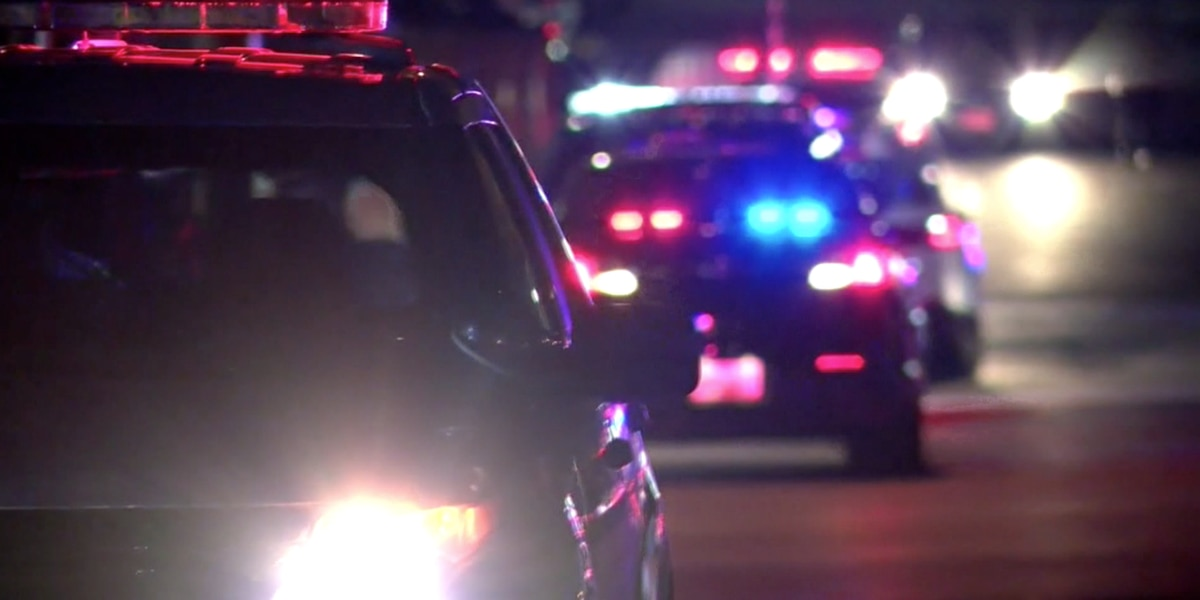 Police: 7 adults shot at child's birthday party in Maryland