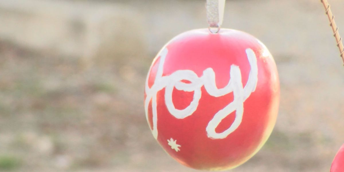 Ornament decorating workshop benefits the Food Bank of NEA
