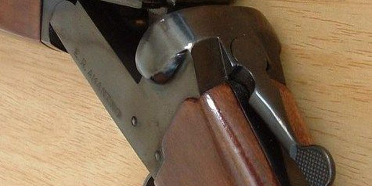 Student faces disciplinary action after bringing shotgun to school