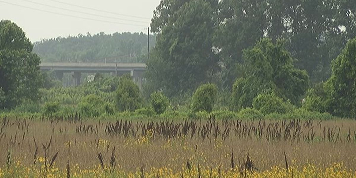 City of Jonesboro, CWL seek rezoning for land along Dan Avenue
