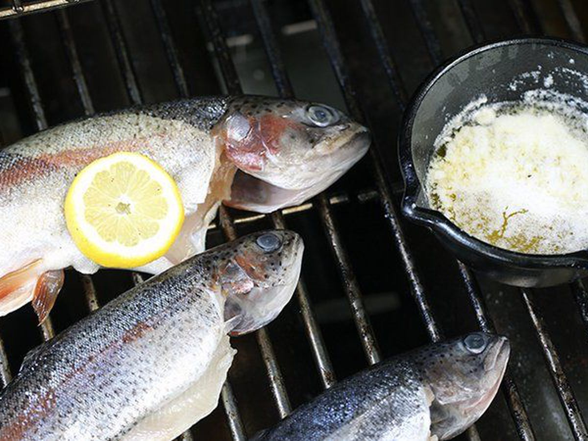 Campfire cooking offers extra flavor to trout