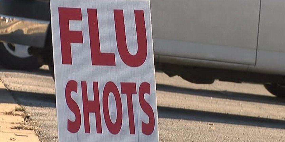 Flu shot clinics planned across Arkansas