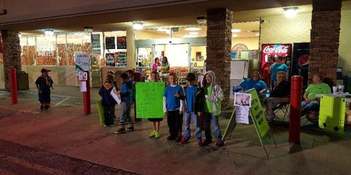 GR8 Job: Local Cub Scouts help Paragould animal shelter